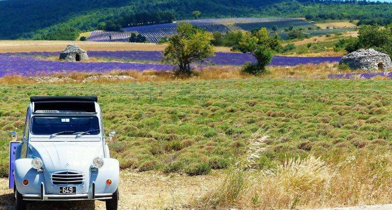 first-lady-paysage-provence